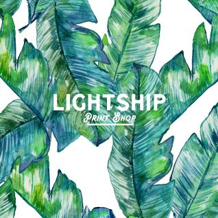 Illustration of banana leaves by Lightship Print Shop, London